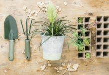 best gardening tools to get your garden started