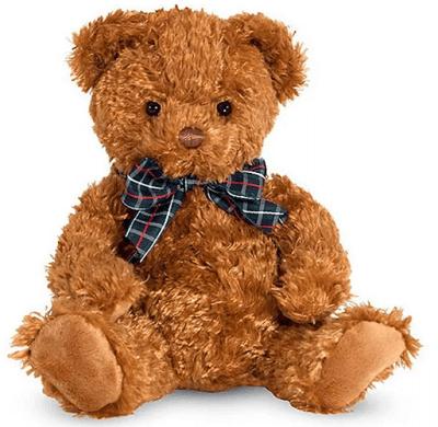 Sleep Training Products - Teddy or Blankey
