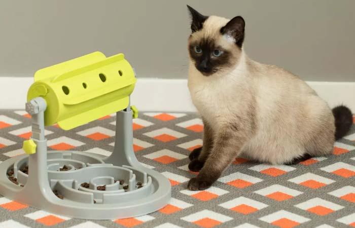 Pet products - Brain Stimulator
